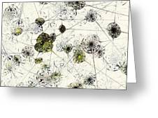 Neural Network Greeting Card by Anastasiya Malakhova