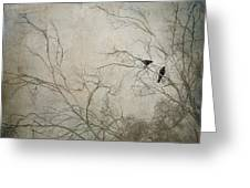 Nevermore... Greeting Card by Amy Weiss