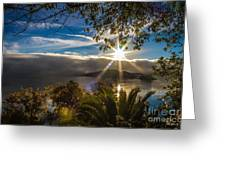 New Day Greeting Card by Mitch Shindelbower