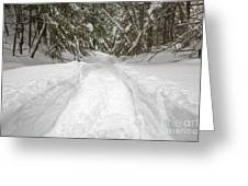 New England Snow-covered Forest - New Hampshire Usa Greeting Card by Erin Paul Donovan