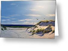 New Jersey Dune Walk Greeting Card by Ken Ahlering