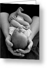 Newborn In Arms Greeting Card by Lisa  Phillips