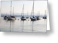 Newport Beach Bay Harbor California Greeting Card by Paul Velgos