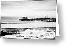 Newport Beach Pier Greeting Card by Paul Velgos