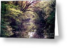 Ni River Greeting Card by Anita Lewis