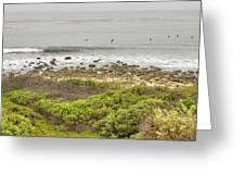 Nicholas Canyon County Beach Greeting Card by Ricky Barnard