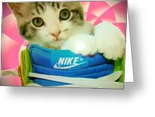 Nike Kitten Greeting Card by Alexandria Johnson