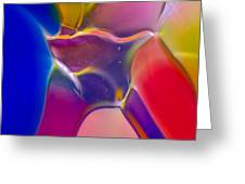Noble Colors Greeting Card by Omaste Witkowski
