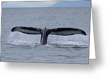 Noncarnival Whale Tail Greeting Card by Richard Henne