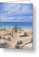 North Beach Haida Gwaii Bc Greeting Card by Barbara St Jean