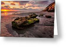 North Beach Rock II Greeting Card by Peter Tellone