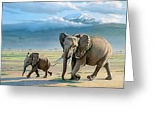 North Of Kilimanjaro Greeting Card by Paul Krapf