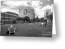 Northeastern University Behrakis Health Sciences Center Greeting Card by University Icons