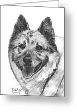 Norwegian Elkhound Sketch Greeting Card by Kate Sumners