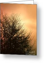 November Memories Greeting Card by Jan Bickerton