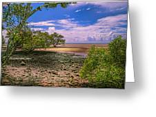 Nudgee Beach Queensland  Australia Greeting Card by Donah Beckhouse