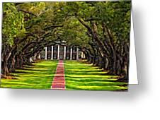 Oak Alley Paint  Greeting Card by Steve Harrington