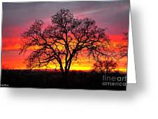 Oak Silhouette Greeting Card by Cheryl Young