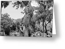Oak Tree with a Face 2 Greeting Card by Victoria Lakes