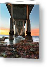 Ocean Beach California Pier 2 Greeting Card by Larry Marshall