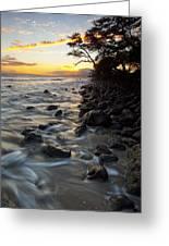 Ocean Flow Greeting Card by James Roemmling