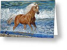 Ocean Stallion Greeting Card by Danielle  Perry