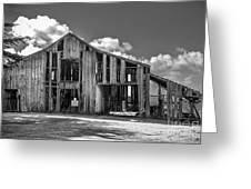 Ocean View Barn Greeting Card by Amy Fearn