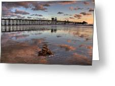 Oceanside Pier Seaweed Greeting Card by Peter Tellone