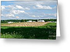 Ohio Amish Farm Greeting Card by Lila Fisher-Wenzel