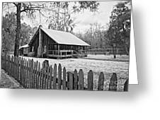 Okefenokee Home Greeting Card by Southern Photo