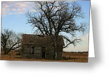 Oklahoma Shack Greeting Card by Ellen Henneke