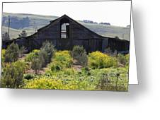 Old Barn In Sonoma California 5d22236 Greeting Card by Wingsdomain Art and Photography
