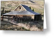 Old Barn Greeting Card by Steve McKinzie