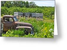 Old Chevy Pickup In Orchard Greeting Card by Jeremy Evensen