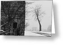 Old Door and Tree Greeting Card by William Jobes