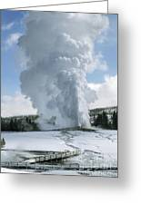 Old Faithful In Her Glory - Yellowstone Greeting Card by Sandra Bronstein