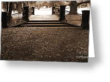 Old Film Bridge Greeting Card by Gonzalo Teran