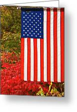 Old Glory Greeting Card by Ron Roberts