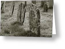 Old Gravestones II Greeting Card by Dave Gordon