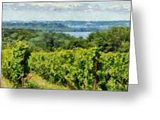 Old Mission Peninsula Vineyard Greeting Card by Michelle Calkins