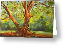 Old Oak With Vines Greeting Card by AnnaJo Vahle