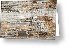 Old Painted Wood Abstract No.1 Greeting Card by Elena Elisseeva