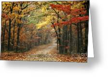 Old Trace Fall - Along The Natchez Trace In Tennessee Greeting Card by T Lowry Wilson