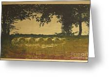On A Farm In France Greeting Card by Deborah Talbot - Kostisin