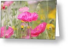 On A Summer Day - Pink Poppy Greeting Card by Kim Hojnacki