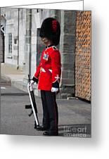 On Guard Quebec City Greeting Card by Edward Fielding