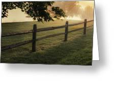 On The Fence Greeting Card by Bill Wakeley