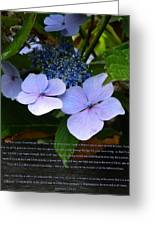 On The Fence Hydrangea Eph 3 14 21 Greeting Card by Nicki Bennett