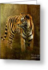 On The Hunt Greeting Card by Betty LaRue