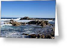 On The Rocks Greeting Card by Barbara Snyder